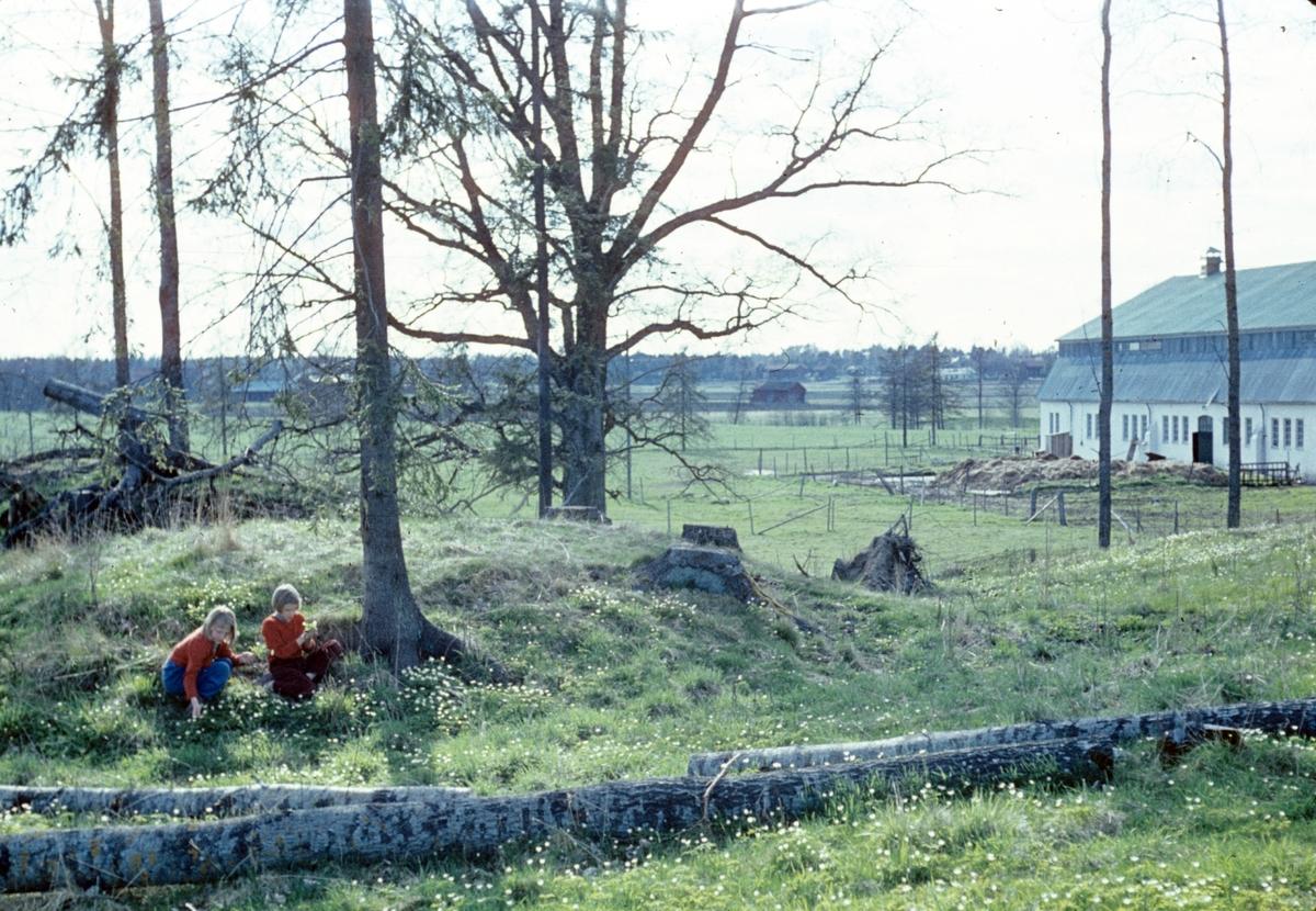 Åby gravar