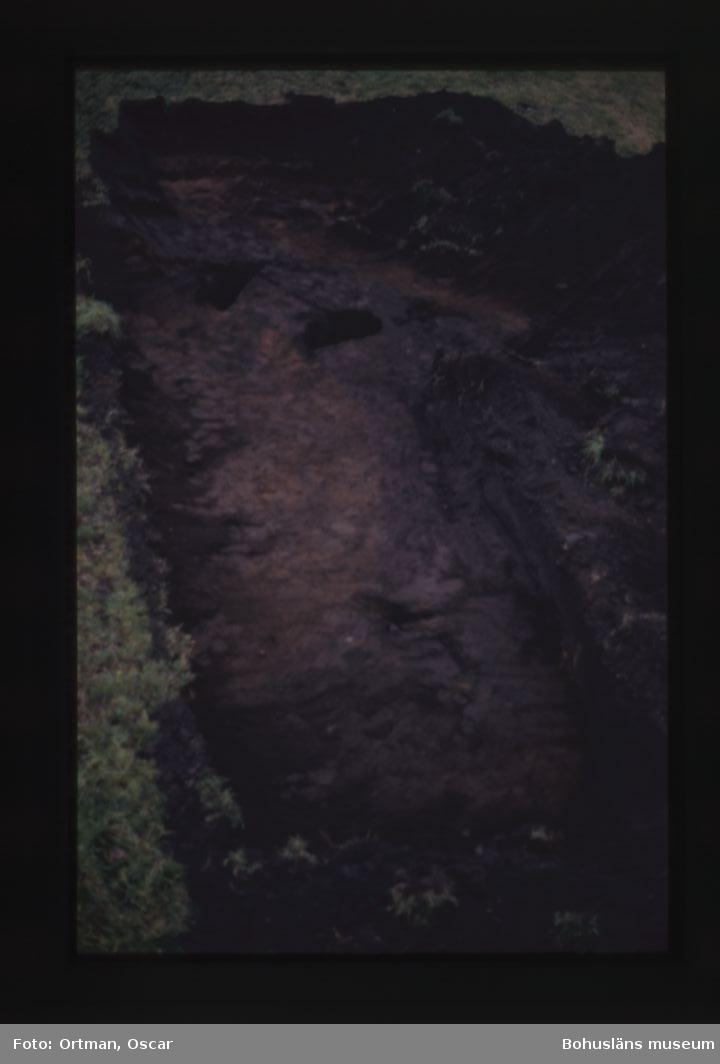 Förundersökning Norum 159 schakt 1 gravränna, fotograferat från öster Fotografiet taget från öster