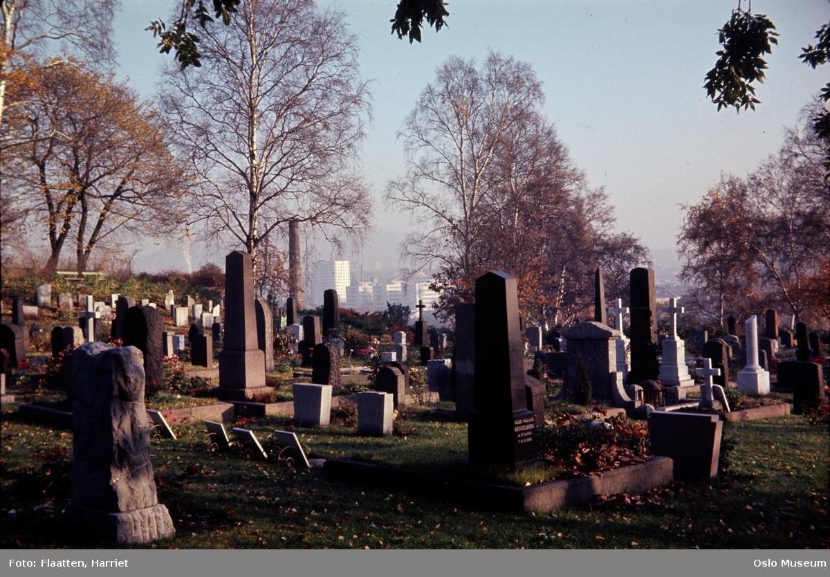 Gamle Aker kirkegård, grevmonumenter, utsikt, boligblokker
