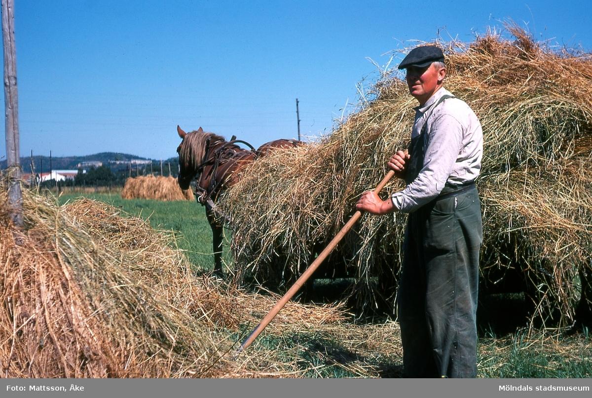 Per Eriksgården 2 i Kärra, Mölndal, på 1960-talet. Sven Hansson arbetar med sitt jordbruk. ÅM 6:35.