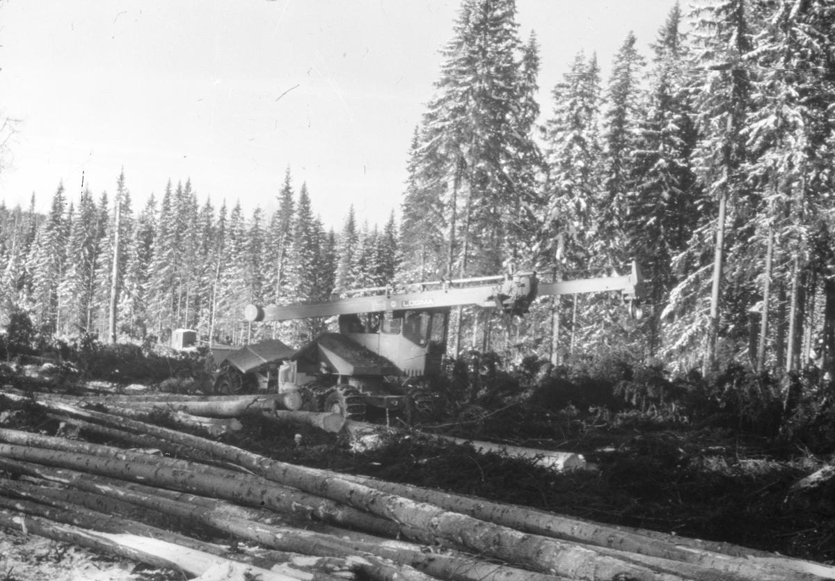 Skogsavverkning. Mellanskog verksam i Gävleborgs län. Mars 1973