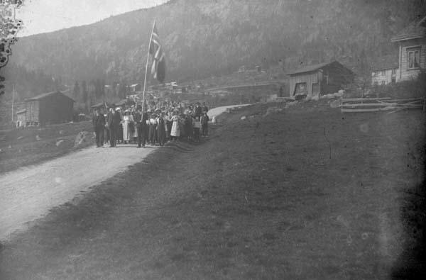 Tveitogardane i Lårdal 17.mai 1914