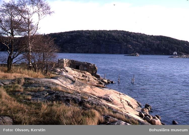 """Text på kortet: """"Ruin Vadboholmen Holma Nov -86""""."""
