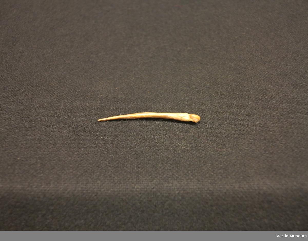 Nål av bein brukt i håndarbeid
