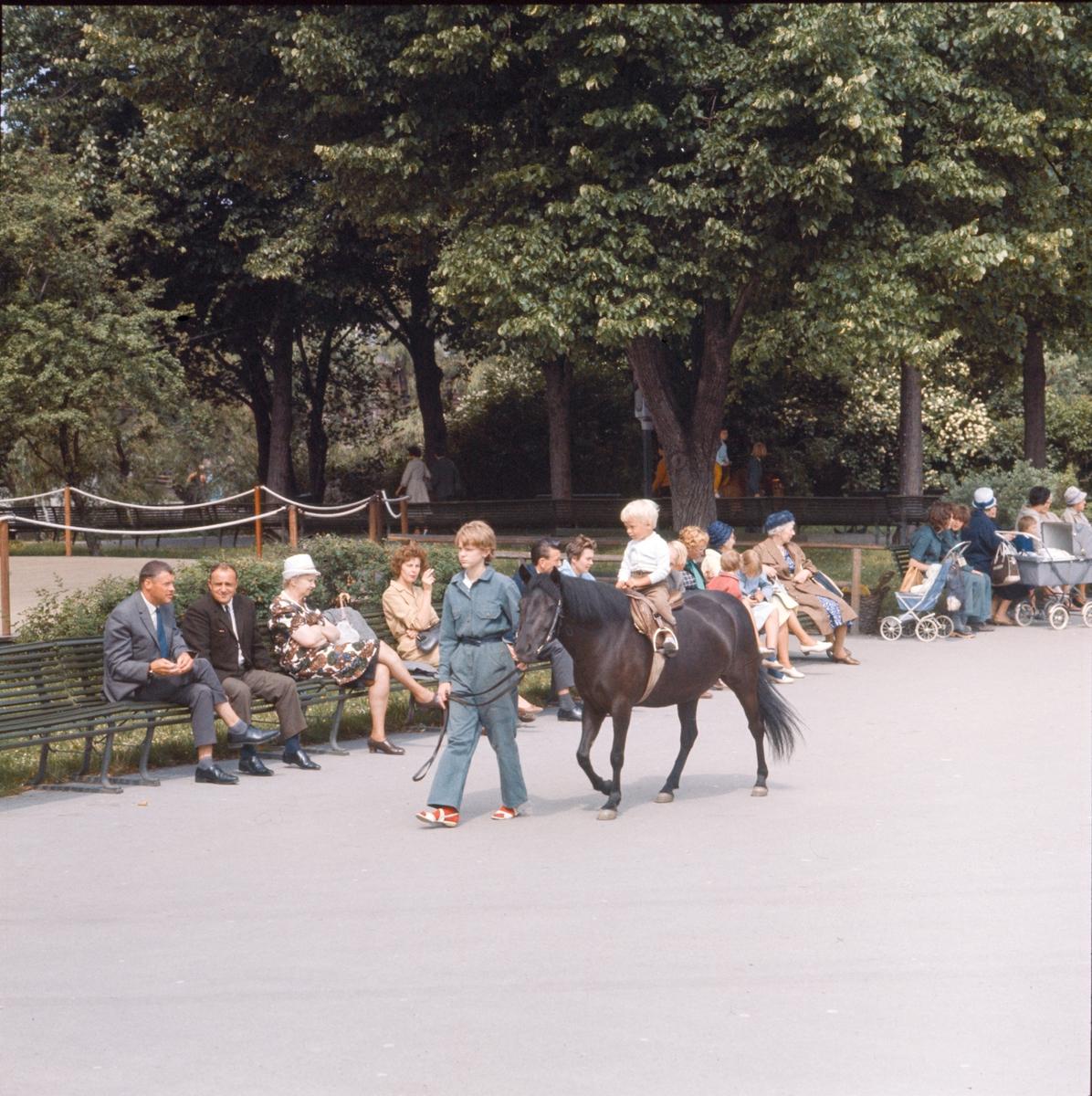 Aktiviteter på Marknadsgatan. Skansens gäster, ponnyridning.