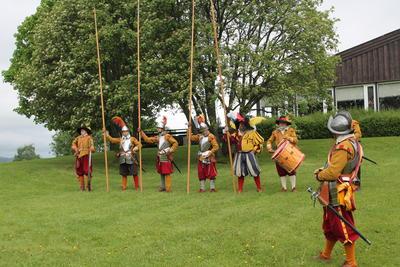 Det søndenfjeldske Frivillige Musqueter Corps