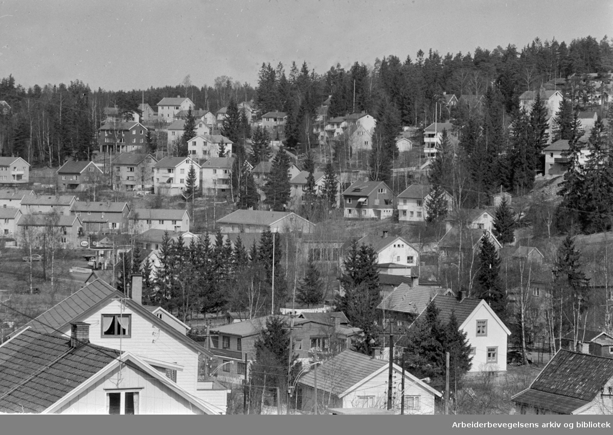 Prinsdal. 1960
