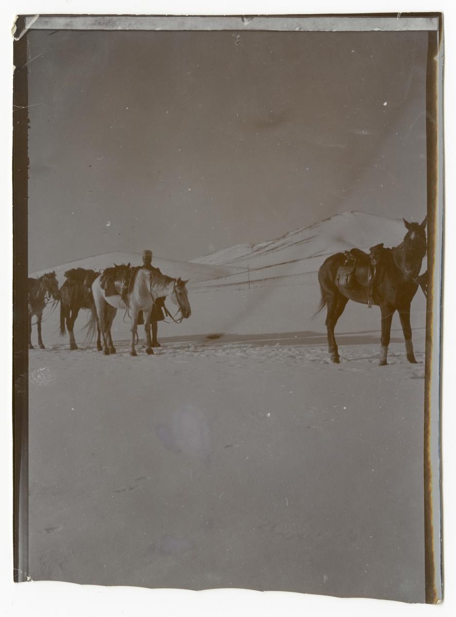 Persien. Gendarmer med hästar i ett snötäckt bergspass.