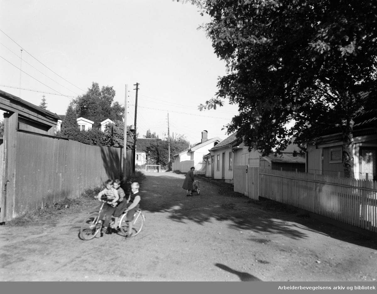 Fridtjovs gate. Privat gate. Vålerenga. Barn på sykkel.Oktober 1955