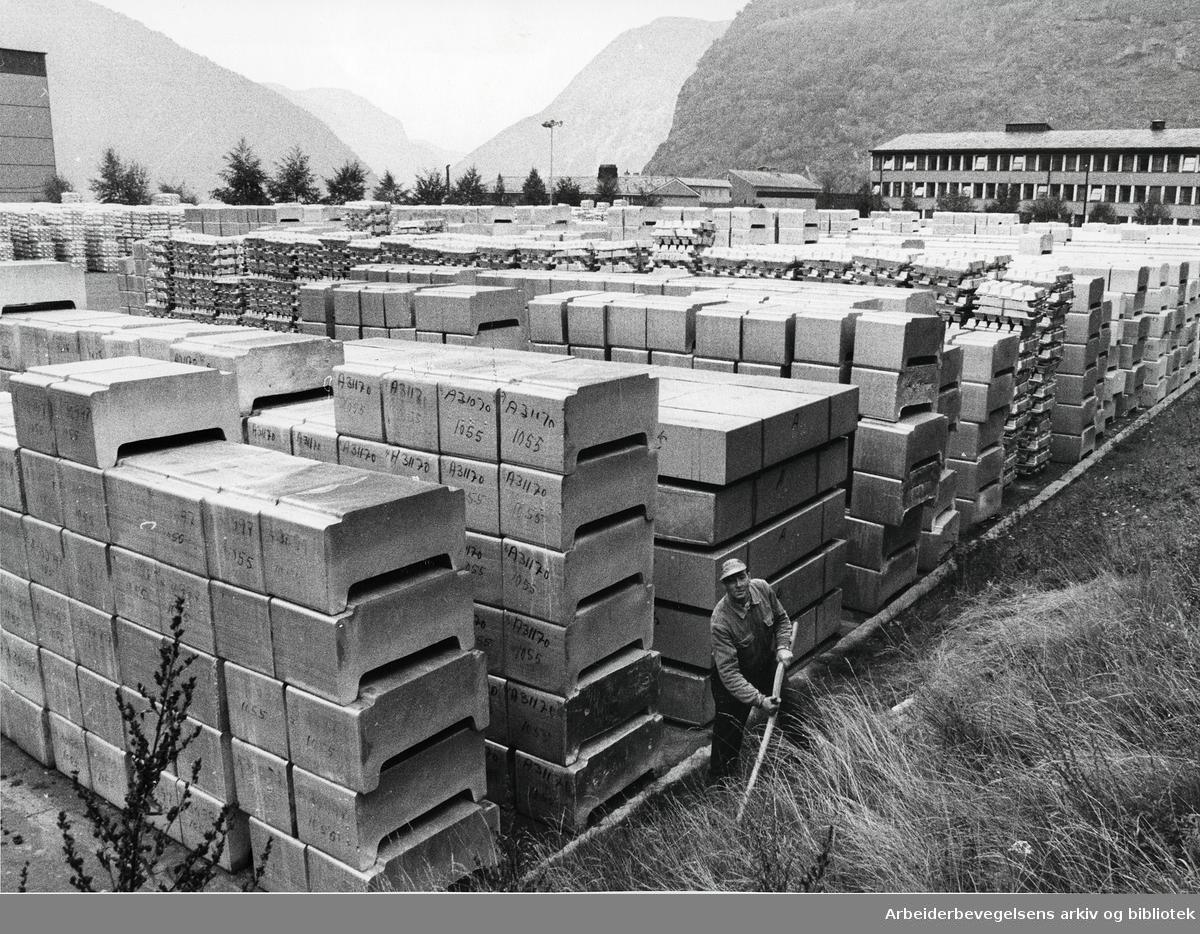 Fellesmeieriet på Bredtvedt, 16. november 1976.