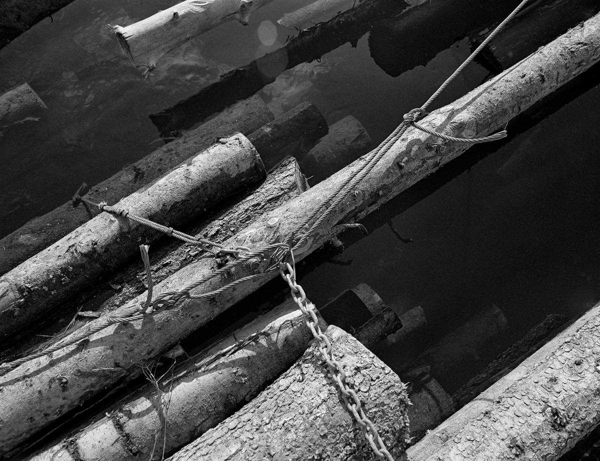 Detalj fra tømmerslep på flåtested i nordenden av Aremarksjøen i Østfold.  Fotografiet er tatt i 1982, som var den siste fløtingssesongen i Haldenvassdraget.  Fløtingsvirket i Haldenvassdraget ble de siste driftsåra utislått som lastebilbunter.  Disse buntene ble bundet sammen i store slep, som ble buksert over innsjøene med kraftige slepebåter som trekkraft.  Ved slusestedene måtte imidlertid slepene deles opp i kortere lenker, som fikk plass i slusekamrene.  Nedenfor slusene ble slusevendingene bundet sammen til lengre lenker igjen, og flere slike lenker ble samlet til store, rektangulære slep.  Over disse ble det spent en langsgående såkalt «revevaier» med en «hanefot» bakerst for sleping.  Tømmerbuntene ble holdt i hop av vaierbind med en kjetting i den ene ytterenden og et pæreformet ringledd, ei såkalt «kause», i den andre.  Lastebilsjåførene la vanligvis tre, av og til fire, slike bind rundt hver bunt.  På dette fotografiet ser vi hvordan de tverrgående buntebindene og den langsgående revevaieren møttes i slepet.  En liten historikk om tømmerfløting og kanaliseringsarbeid i Haldenvassdraget finnes under fanen «Opplysninger».