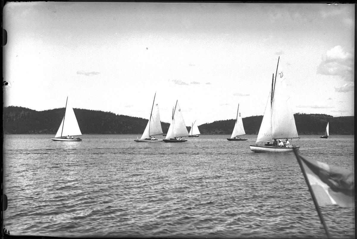 """Sju segelbåtar ute på sjön. I förgrunden syns en svensk flagga. I fotografens egna anteckningar står det """"Kappsegling""""."""