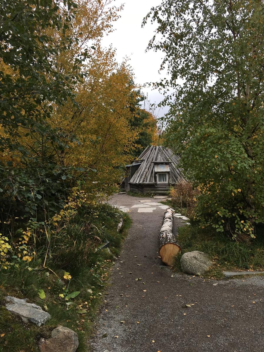 Saemien sijte på Skansen gestaltar en nutida sydsamisk miljö. Sitan består av fyra byggnader; torvkåtan, stolpboden, timmerkåtan samt njallan. Byggnaderna har uppförts på eller flyttats till Skansen under 1900-talet samt 2000-talets första årtionde. De två kåtorna samt stolpboden stammar från Jämtland, njallan från Norrbotten.