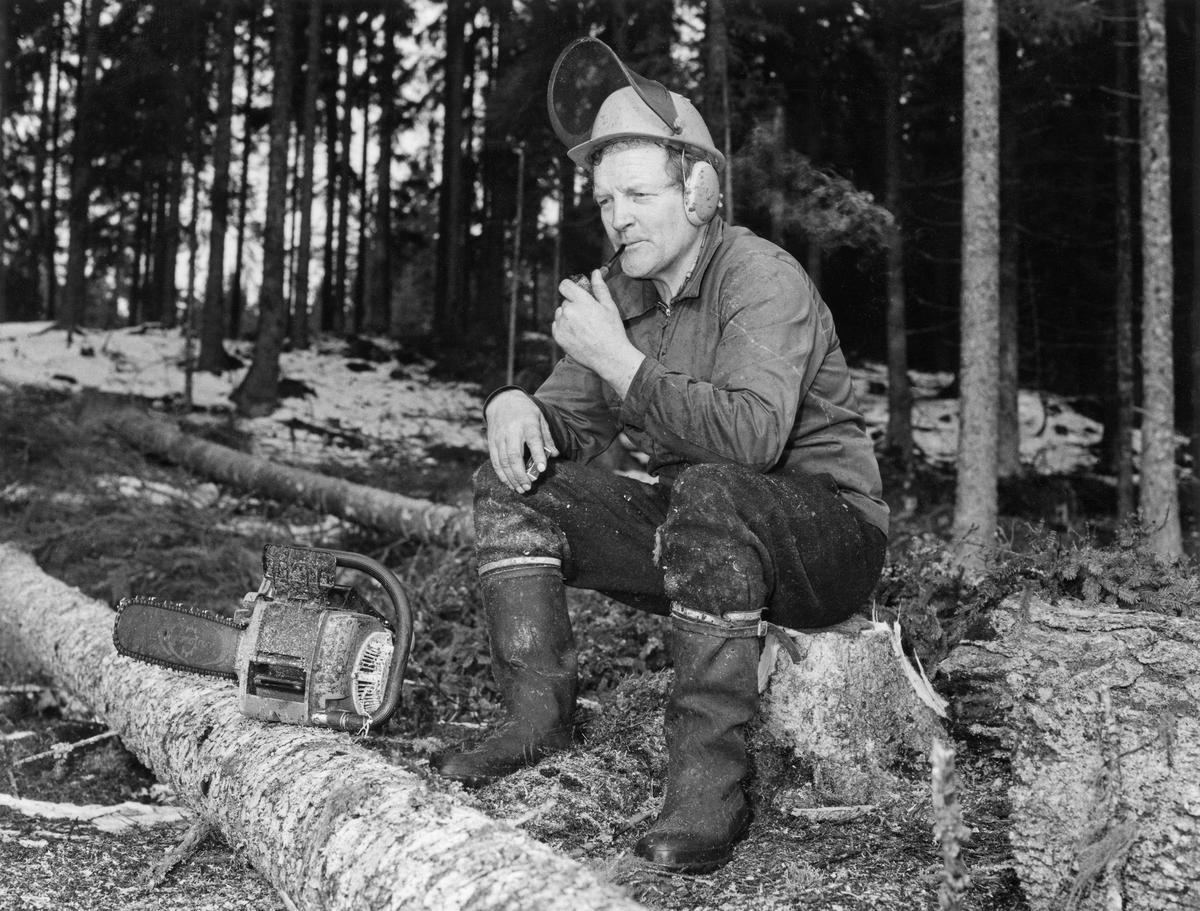 Hans Børli på arbeid i skogen med sin Jobu motorsag. (Foto/Photo)