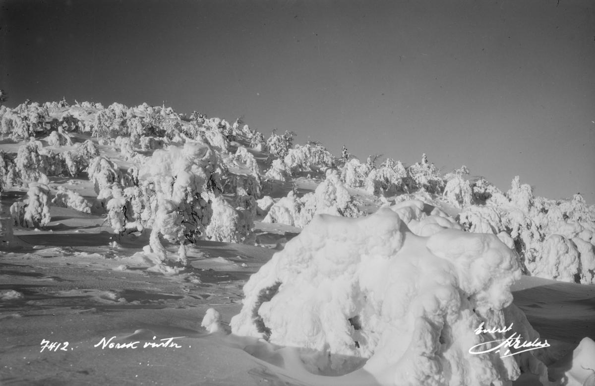Norsk vinter.
