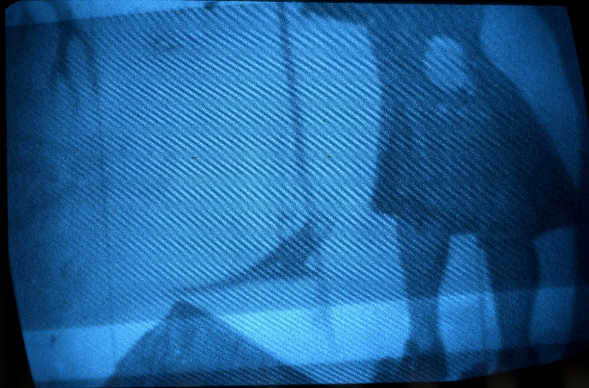 Bilder fra Synvisstua tatt med IR-fotokamera.