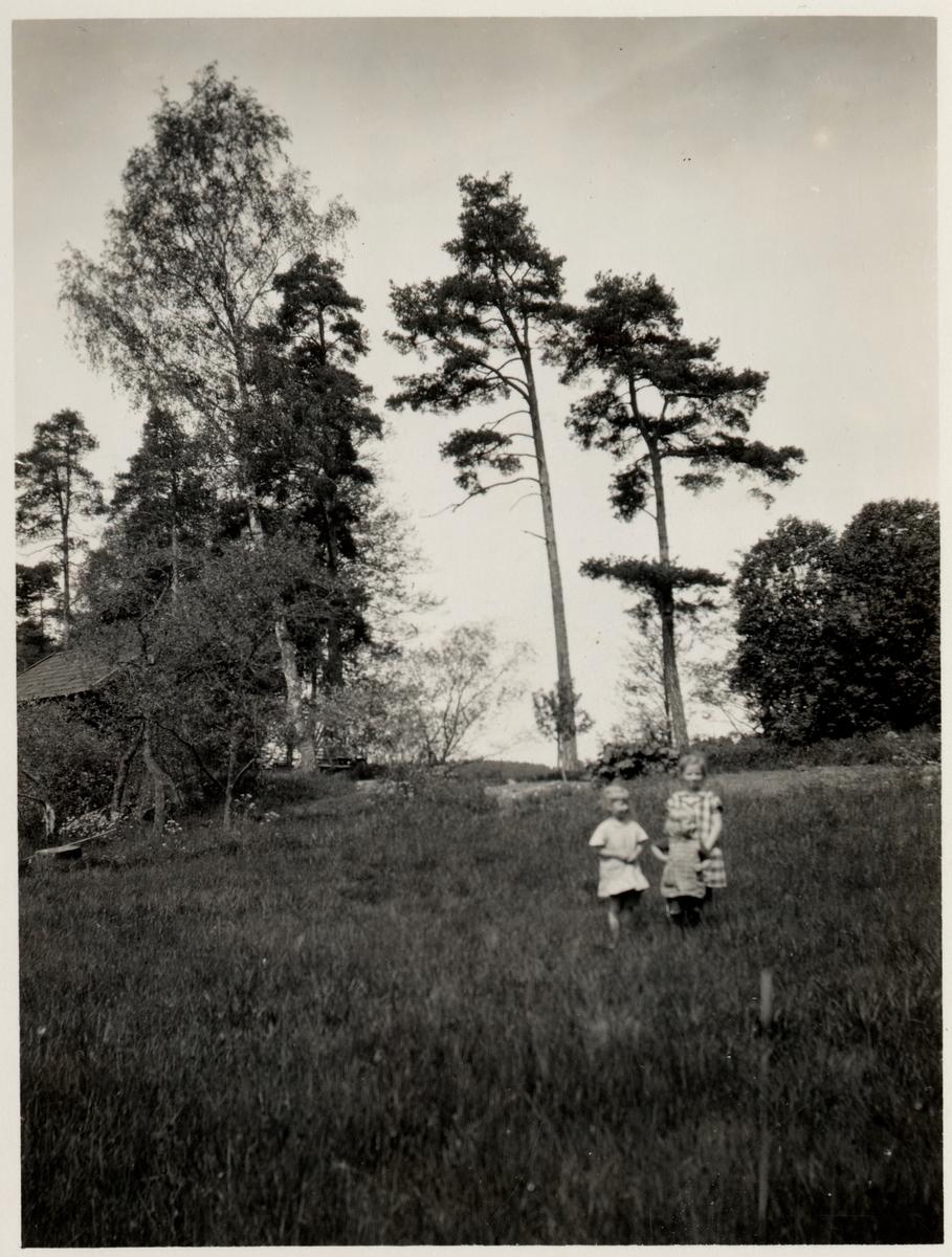 Text på kortet : Vetmången inom cituationstecken,  Vikmångeln, Vetmångensjön. Katrineholm- Åby