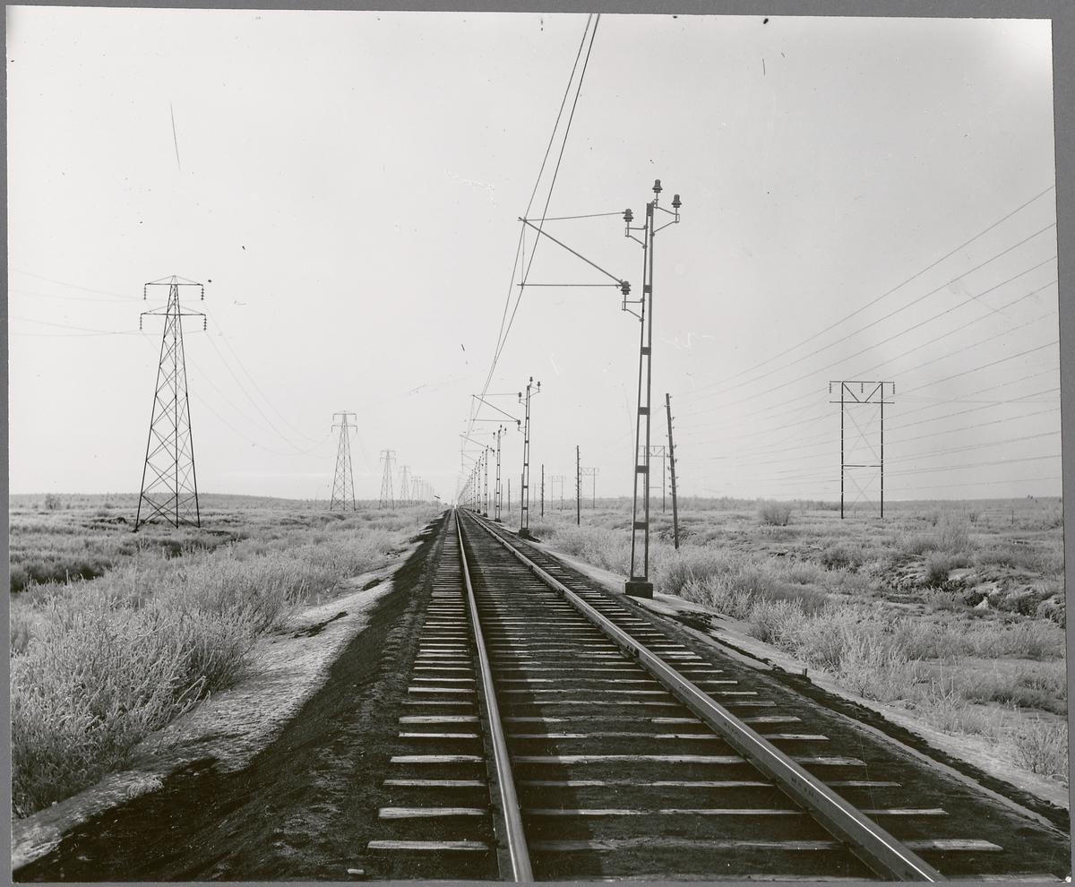 På linjen mellan Kiruna-Gällivare.