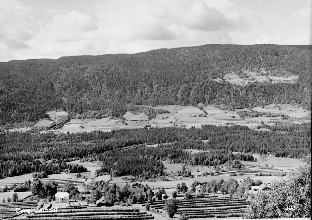 Østre Gausdal - utsikt fra Øverbygda