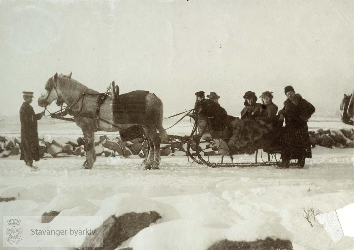 Tur med hest og slede i snøen