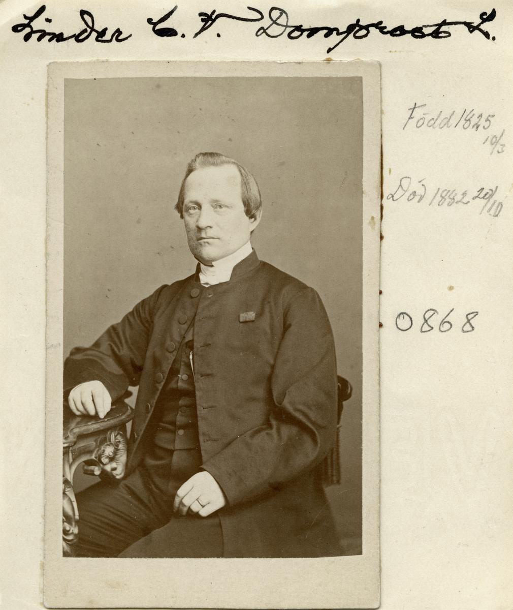 Carl Vilhelm Linder hade en imponerande karriär. Född i Vist socken 1825 som son till hemmansägaren Daniel Persson och dennes maka Stina Nilsdotter, avlade han filosofie kandidatexamen vid Uppsala universitet 1851. Därefter följde ett raskt akademiskt avancemang som kröntes med professorstitel vid Lunds universitet 1859. Prästvigd först 1866 men redan 1868 domprost i Västerås. Från 1877 samma tjänst i Linköping. Detta till trots fortsatte han som riksdagsman för Västerås med flera orter till 1881. När magkräftan ändade hans liv 1882 hade han varit gift med Ulrika Wallenberg i knappt 30 år och sett henne bära fram elva barn.