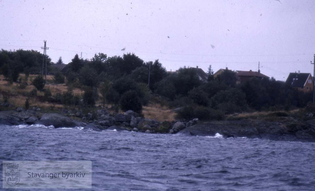 Roaldsøy