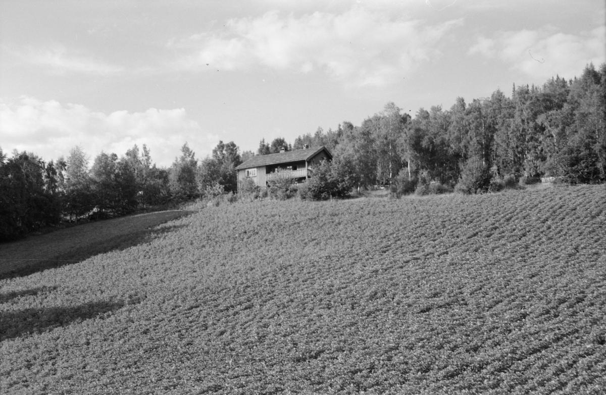 Ukjent bygning, antatt i Østre Gausdal