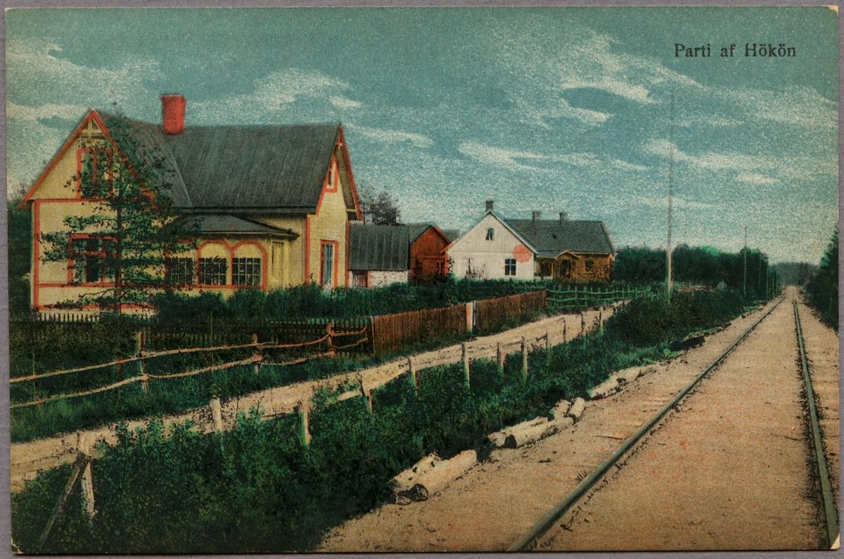 Järnvägsspåret vid Hökön.