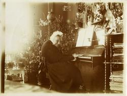 Fru Dorothea Anker f. Arveshoug (1811-1905) avblildet sitten