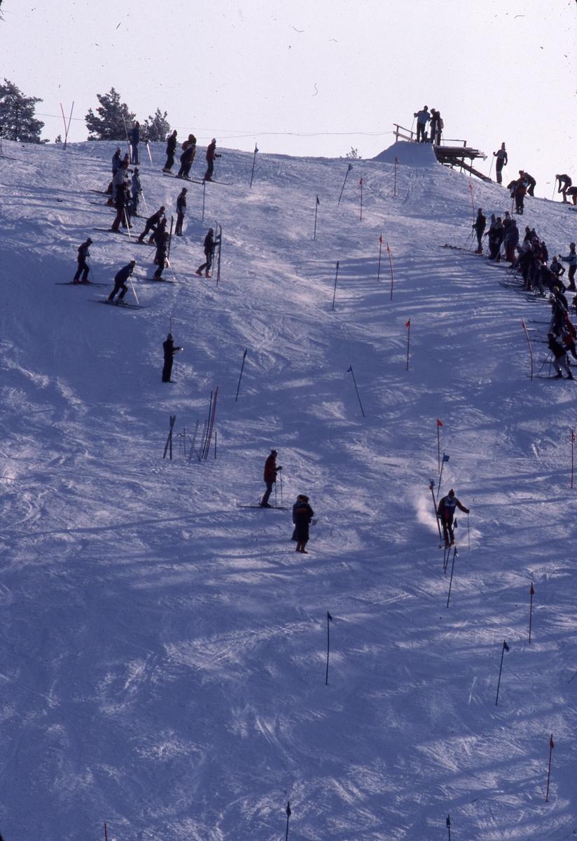 Slalomåkare och publik i Teknikbacken