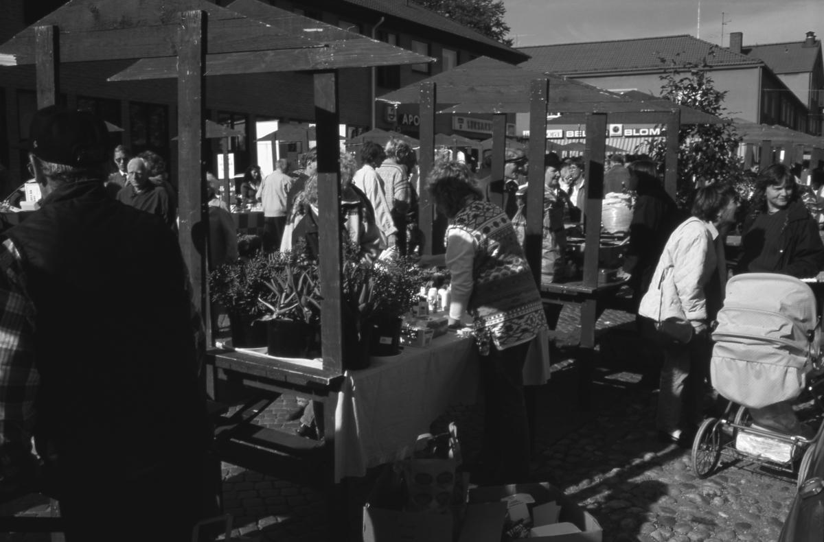 """Höstmarknaden """"Bonde på stan"""" på Järntorget. Mycket folk i rörelse. Torgstånden är flitigt besökta. En barnvagn ses längst till höger. Apoteket, leksaksaffären och Bellis blommor skymtar i bakgrunden."""