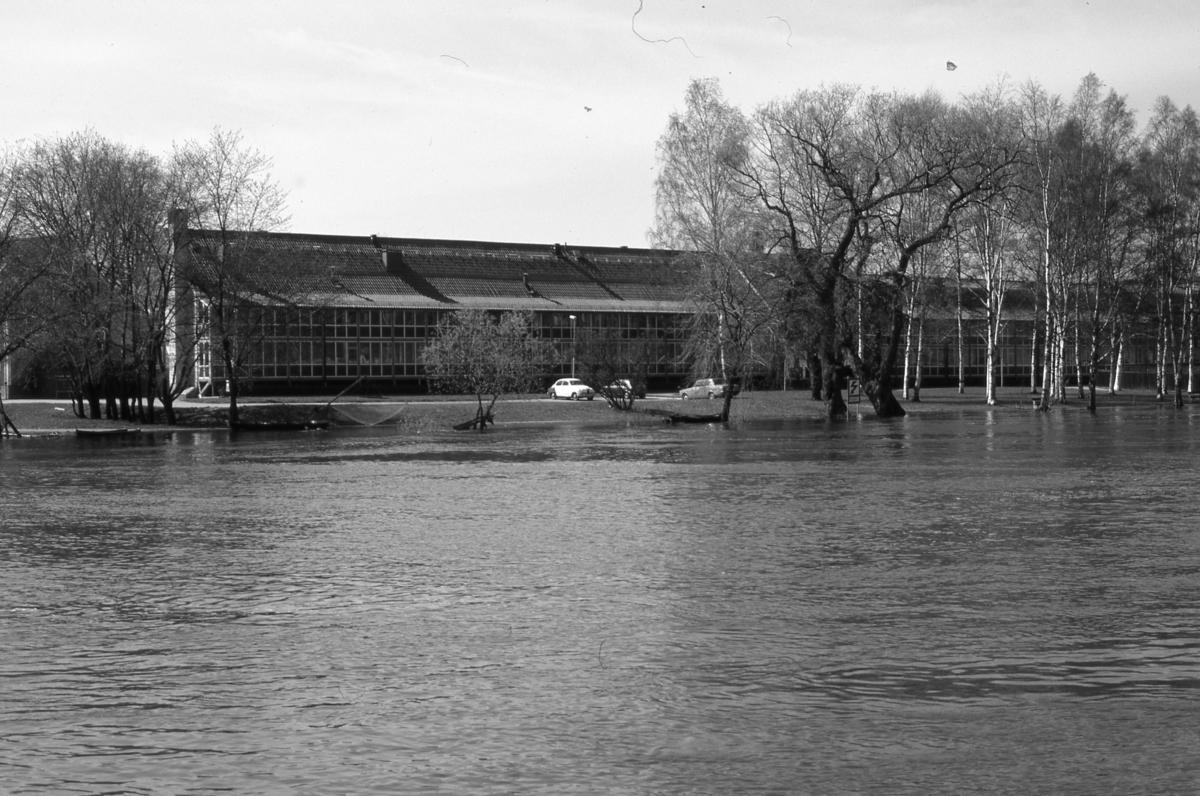 Äldreboendet Stabbaren, senare Strandgården, på Storgatan. Högt vatten i Arbogaån. En håvbåt ligger i ån. Bilar står på parkeringen. Översvämning, vattnet når högt på trädstammarna.