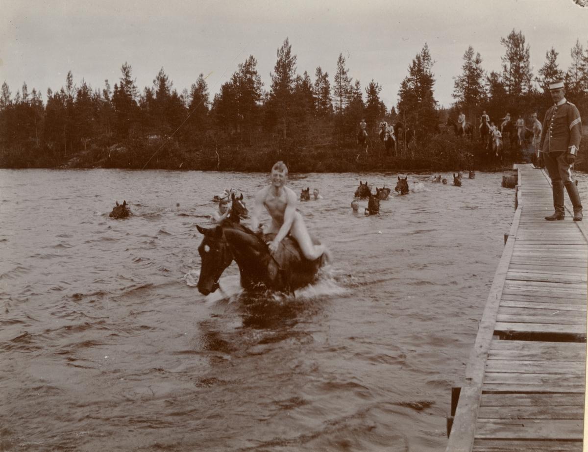 Elever vid Kavalleriskolan i Umeå simmar med hästar i Piparbölesjön.
