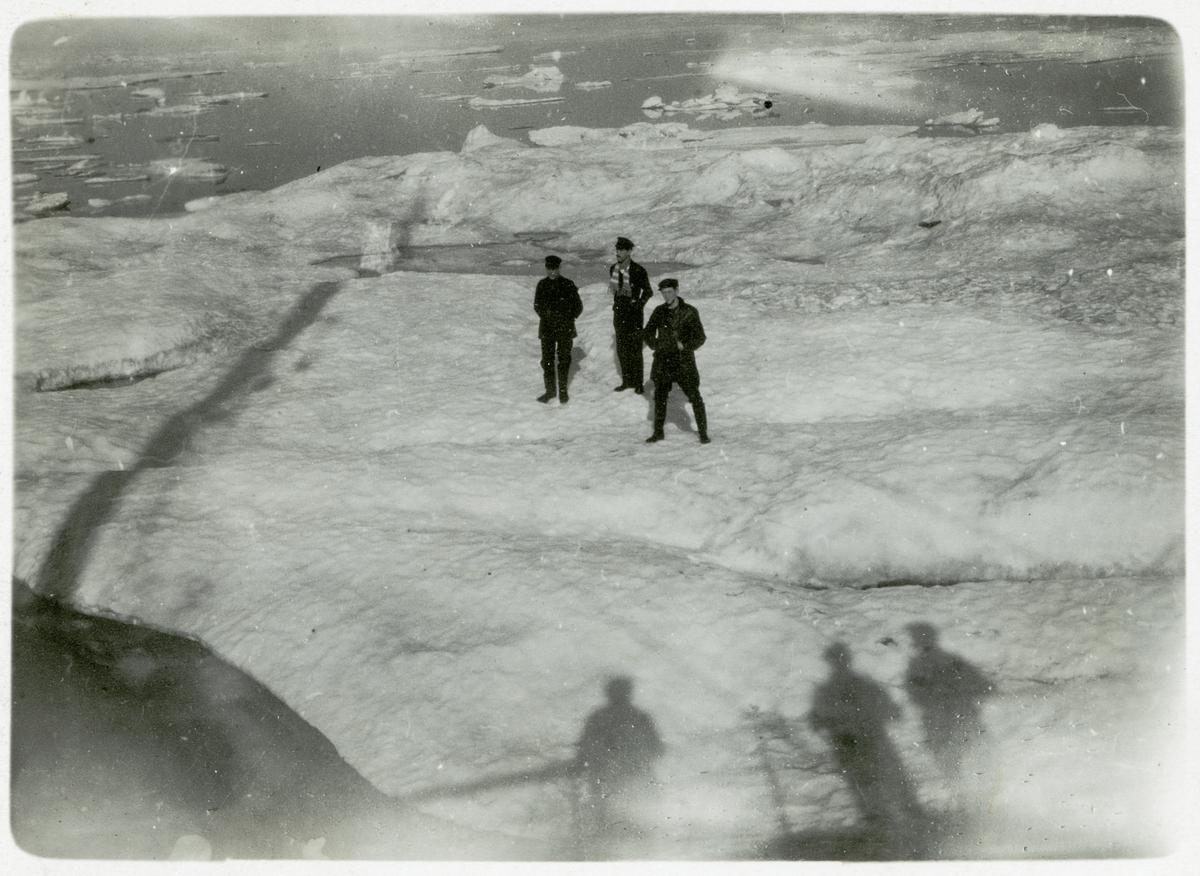 Besättningsmedlemmar som står på ett isflak i Karahavet framför S.S. Halvar. 1919.
