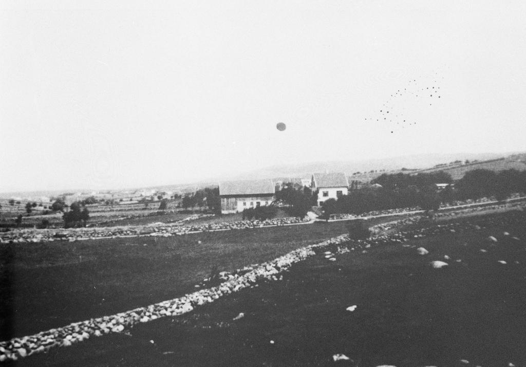 """Garden """"Dybendal"""" på Rossaland. Lange fine steingardar. Sjå også 1990.1TIM.28.002. Markene i framgrunnen er nå (1990) byggefeltet Tunhagen."""