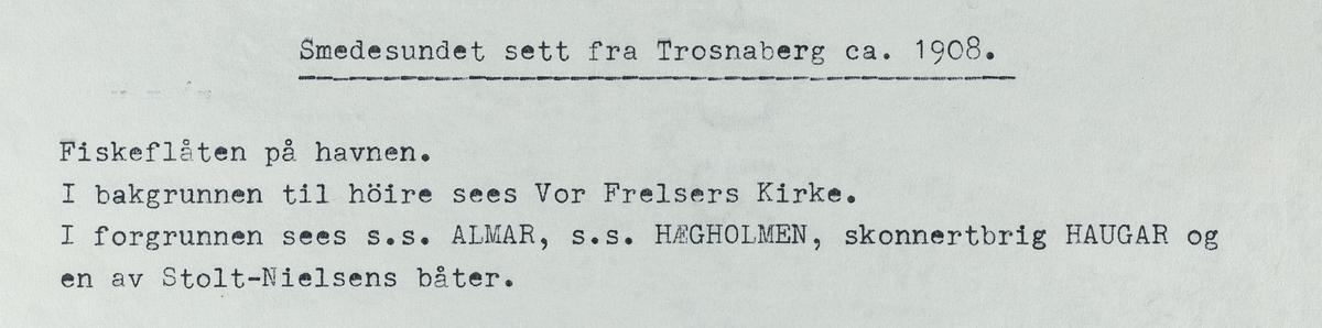 Smedasundet sett fra Trosnaberg, ca. 1908.