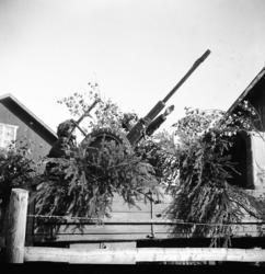Automatkanon m/1940, 20 mm, i rörligt luftvärnslavett. På la