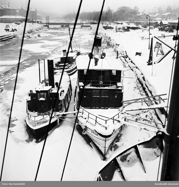 Vinterbilder med massor av båtar vid Norra kajen och Selångersåns mynning.