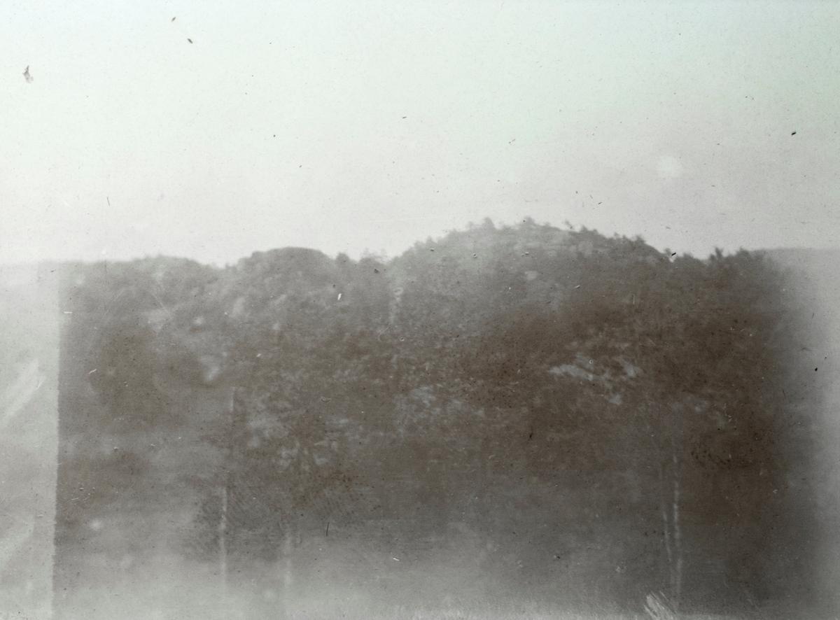 Motiv av skog og fjell ved Langeby.