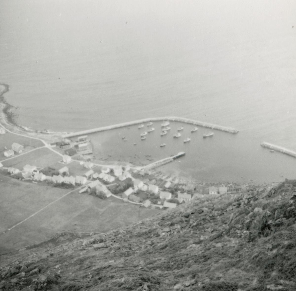 Oversiktsbilder over havna og bebyggelse på Alnes, Godøy.