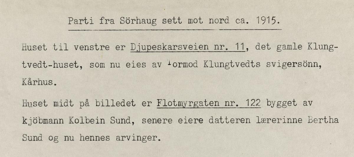 Parti fra Sørhaug sett mot nord, ca. 1915.
