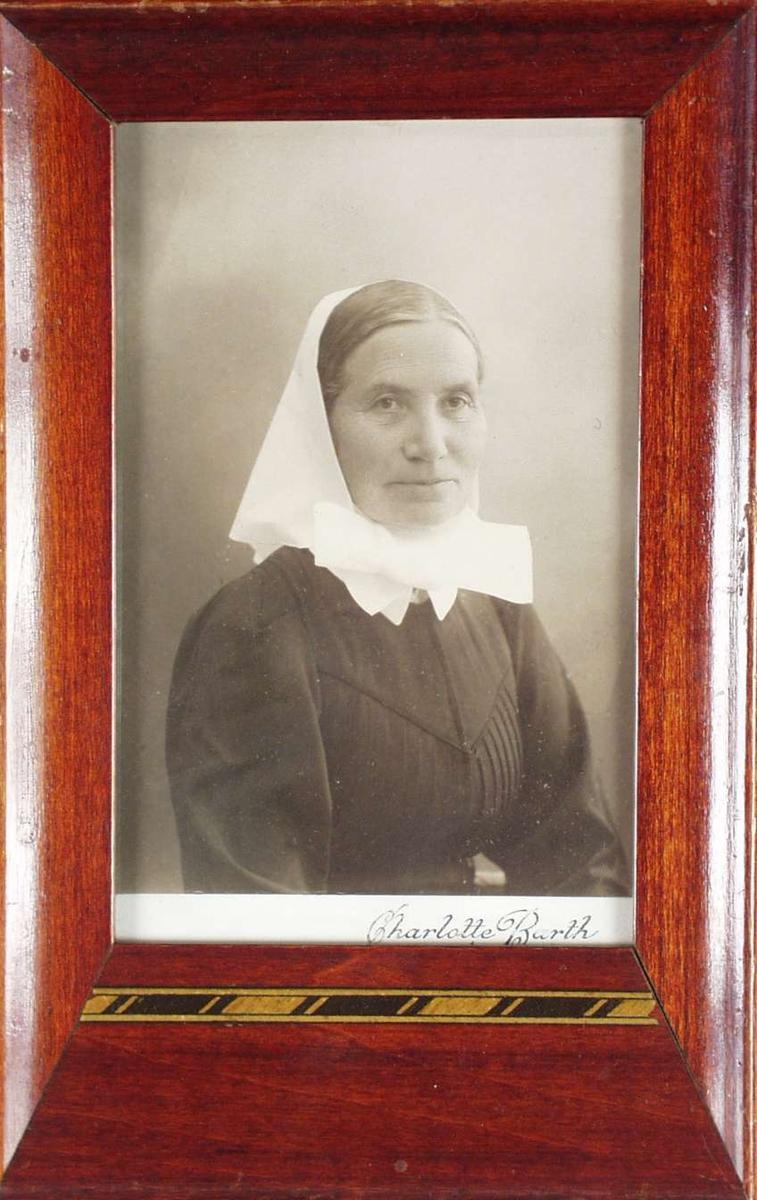 Portrett med brun ramme. Den har en dekorrand i svart og gull under bildet.
