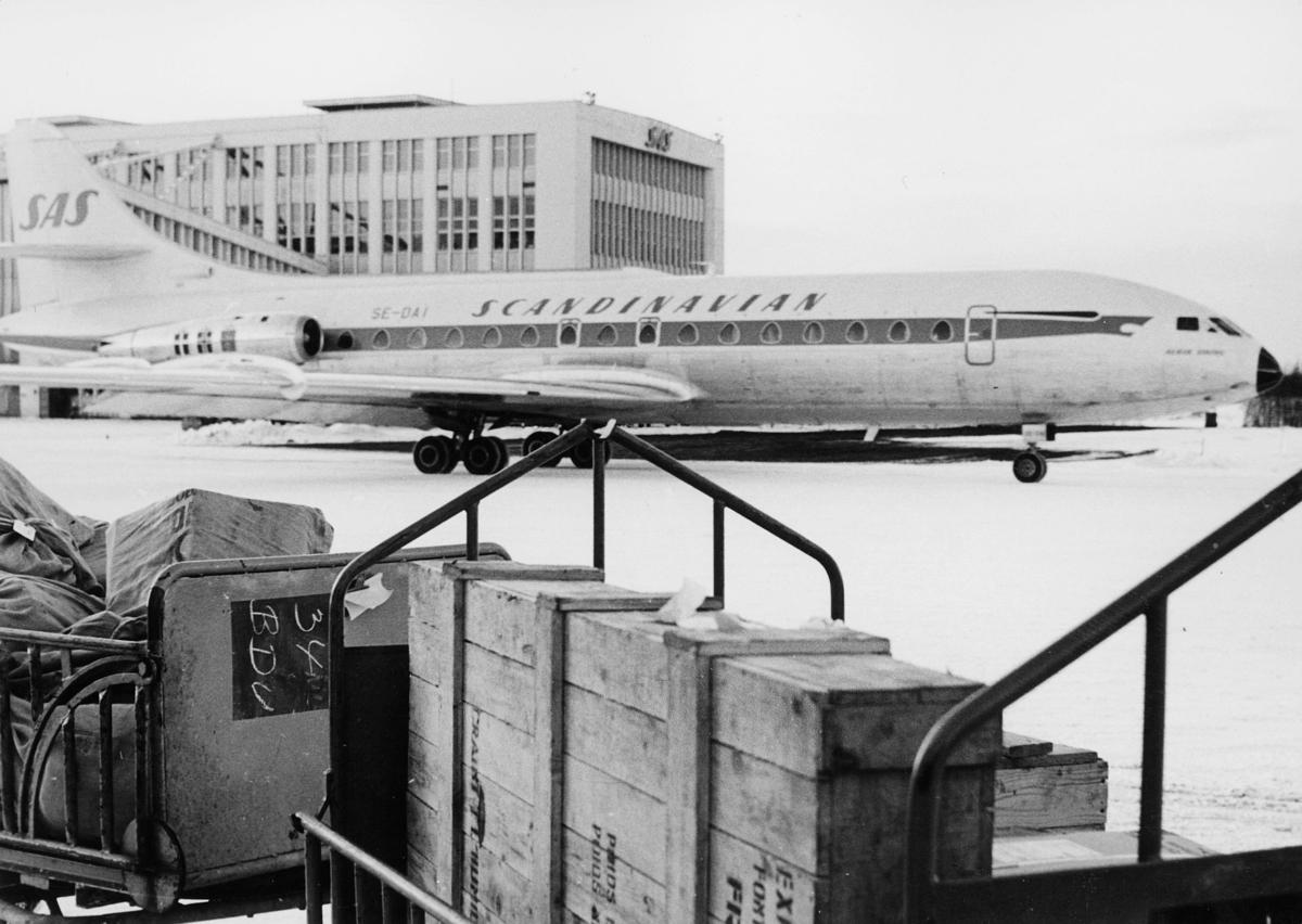 transport, fly, Oslo Lufthavn, SE - DAI SCANDINAVIAN SAS, lasting, lossing. på bakken