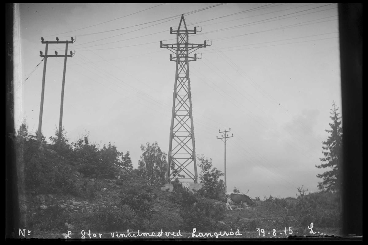 Arendal Fossekompani i begynnelsen av 1900-tallet CD merket 0565, Bilde: 75 Sted: Bøylefoss høyspentlinjer Beskrivelse: Langerødvinkelen