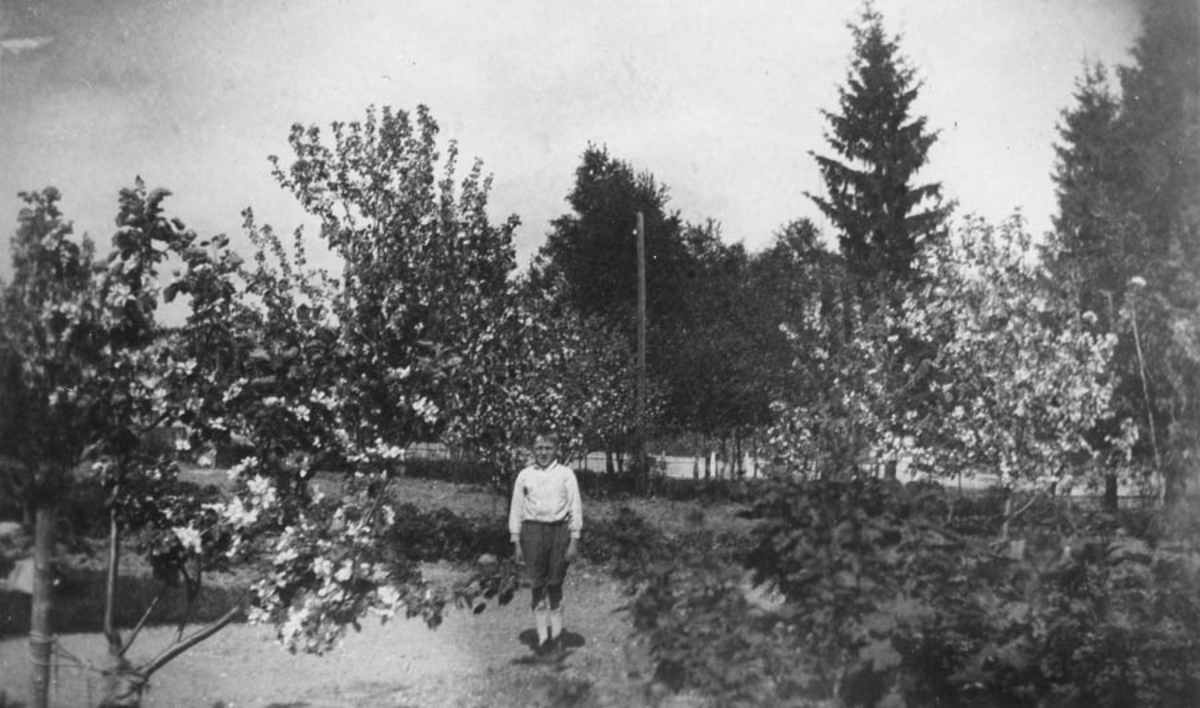 Hans A. Hansen ihaven mot Gammleveien.