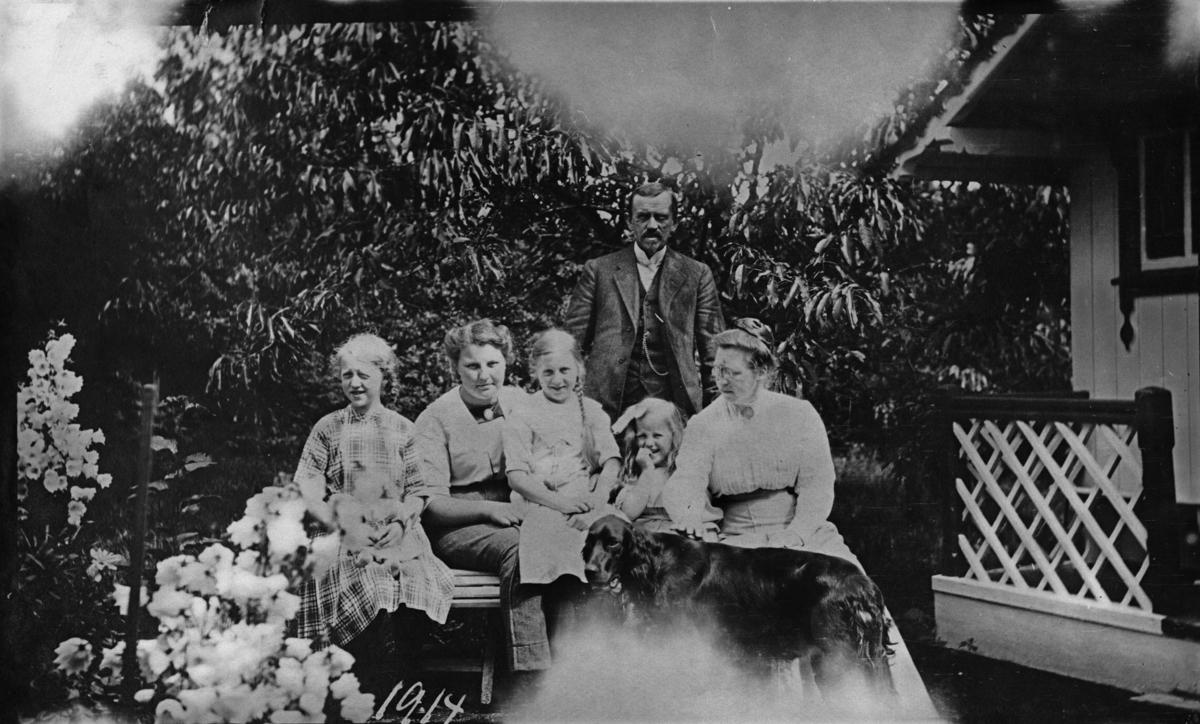 Familien fotografert i hagen, hund, barn