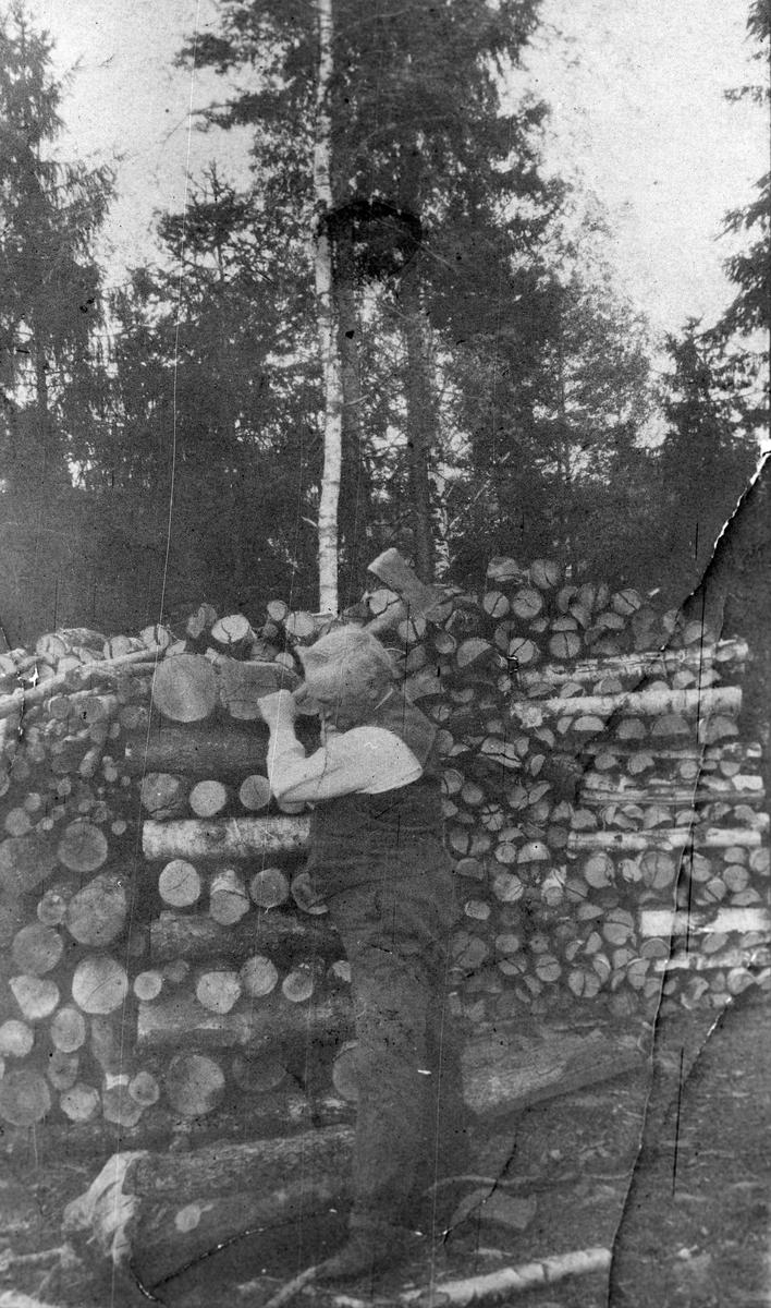 Gustav Jansen hugger ved på tomten.