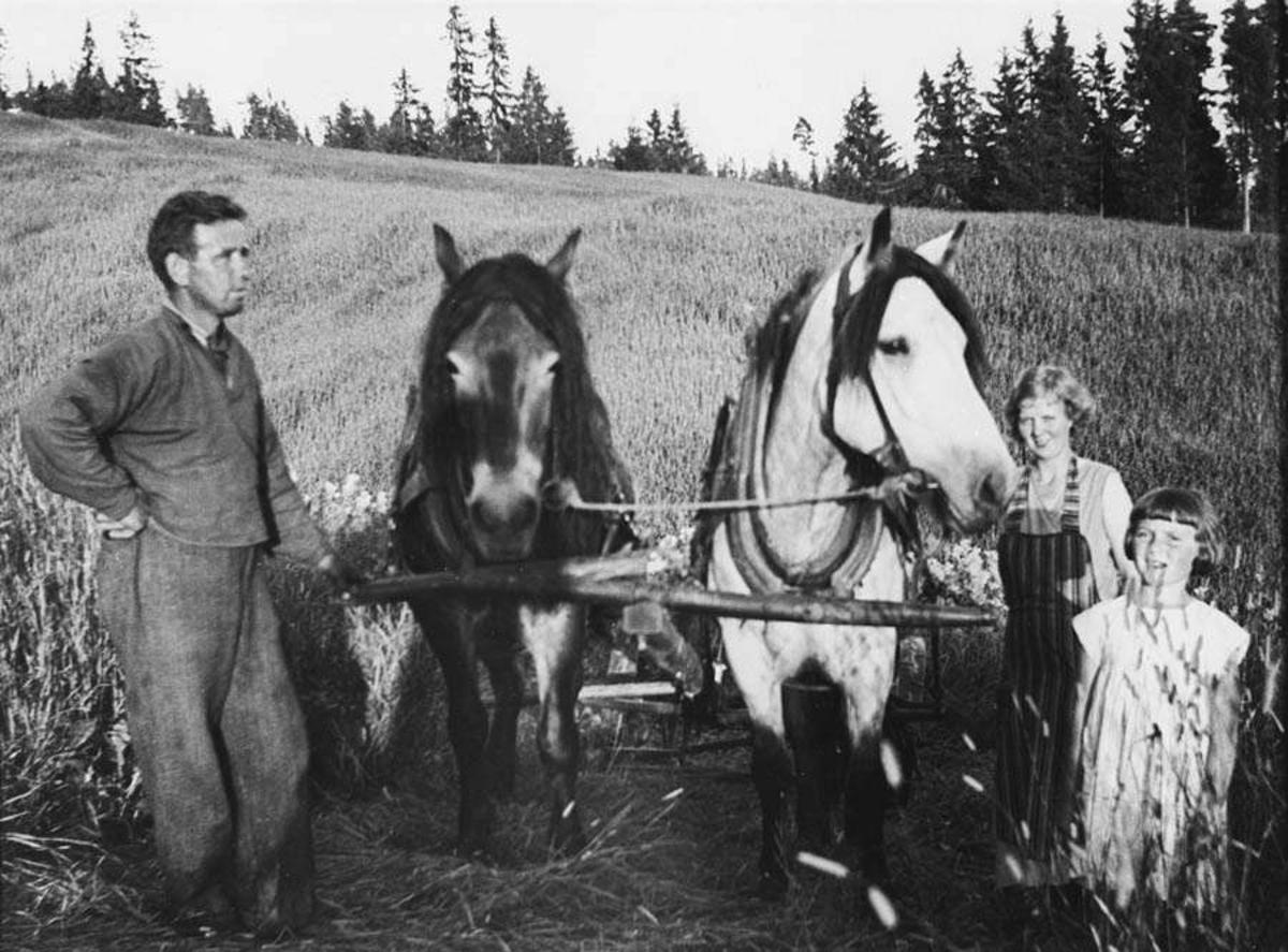 Mann, kvinne, barn, hester.