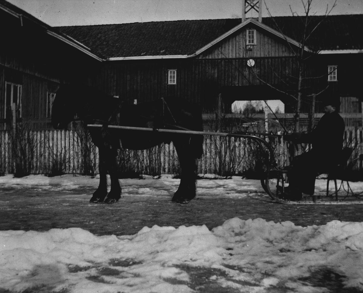 Bjerke, Peder Engen på sleden 1912