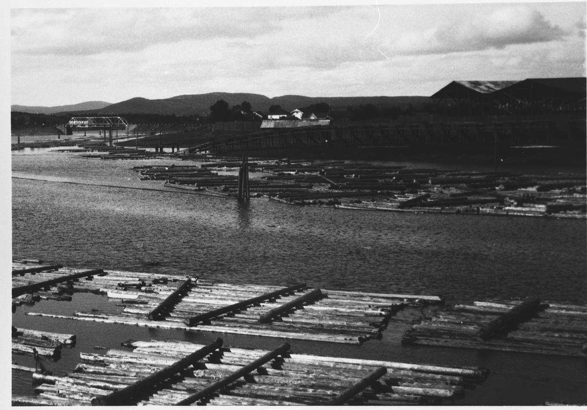 Ved Lillestrøm Dampsag og Høvleri i 1920 - årene, tømmer i vannet